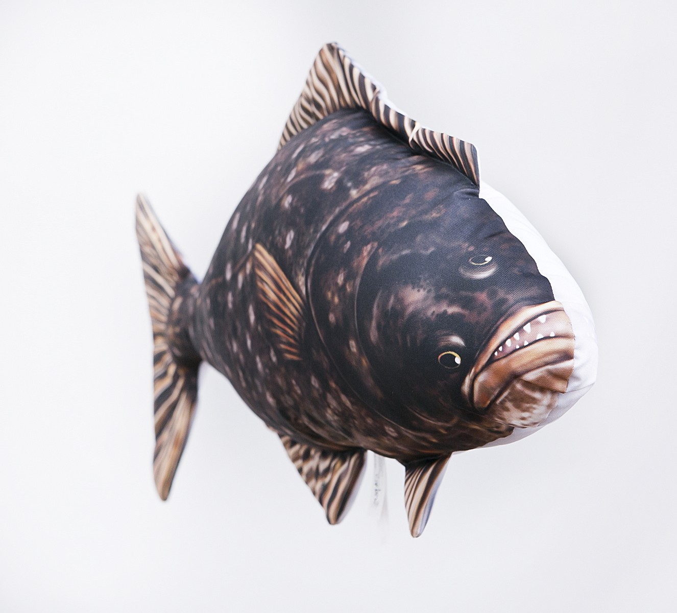 Large 66cm//Giant 100cm Gaby Atlantic Bluefin Tuna Fish Pillows